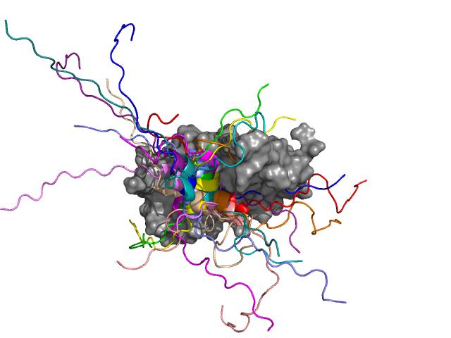 Több, mint 30 gén átíródását szabályozó GCN4 transzkripciós faktor (színessel ábrázolva) kapcsolódása a mediátor transzkripciós koaktivátor (Med15, szürkével ábrázolva) alegységéhez. A GCN4 középső része hélix konformációt vesz fel, mely több pozícióban j
