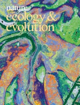 Magyar vonatkozású felvétel a Nature Ecology & Evolution júliusi számának címlapján: a kép a püspökladányi Ágota-puszta légi lézerszkenneléssel készült vegetációtérképe