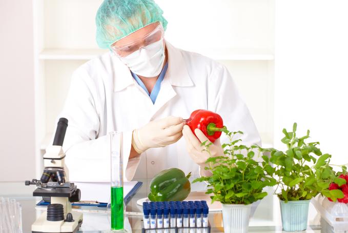 Génmódosított növények az EU-ban? Bízzuk a tagállamokra a döntést