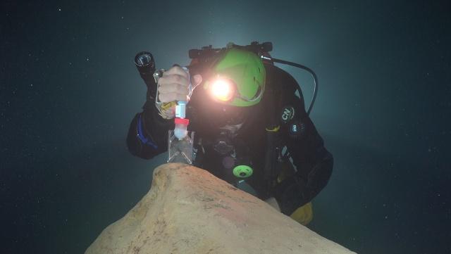 barlangbiológia, Molnár János-barlang