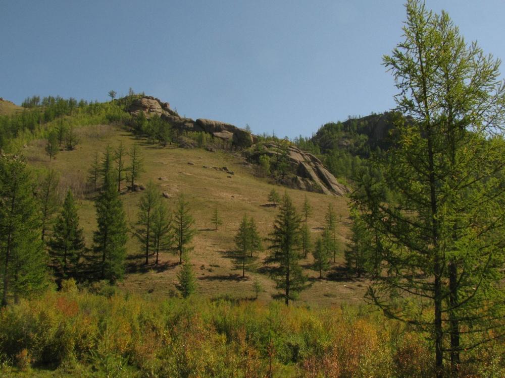 Hegyi erdőssztyepp Mongóliában, a Gorkhi Terelj Nemzeti Parban