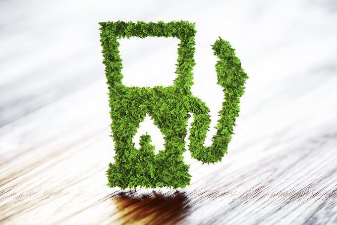 Biobenzin cellulózból – hogy az autó ne vegye ki a falatot a szánkból