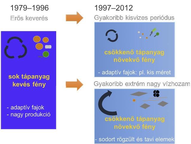 A dunai fitoplankton funkcionális alapú kompozíciós változásai