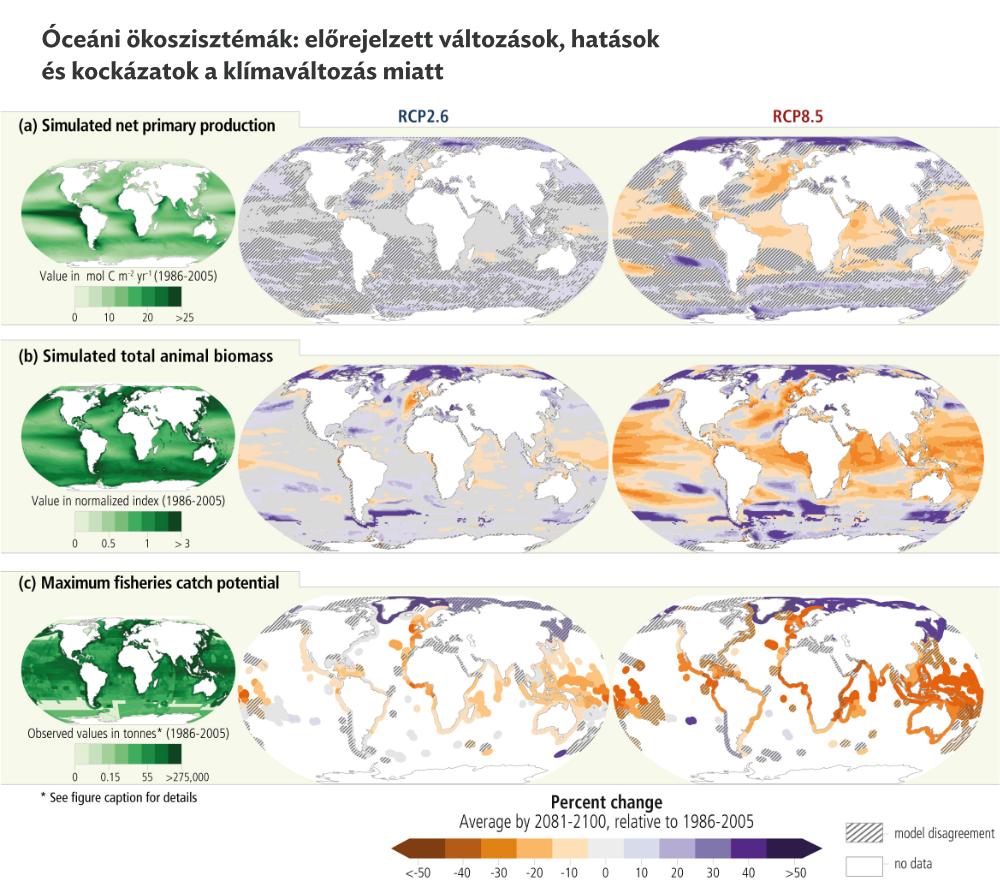 Várhatóan milyen változások, behatások és kockázatok érik az óceáni ökoszisztémákat különböző üvegházgáz-kibocsátási forgatókönyvek mentén? Modellszámítások eredménye a) nettó elsődleges produkcióra; b) a teljes állati biomasszára; c) a halászterületek po