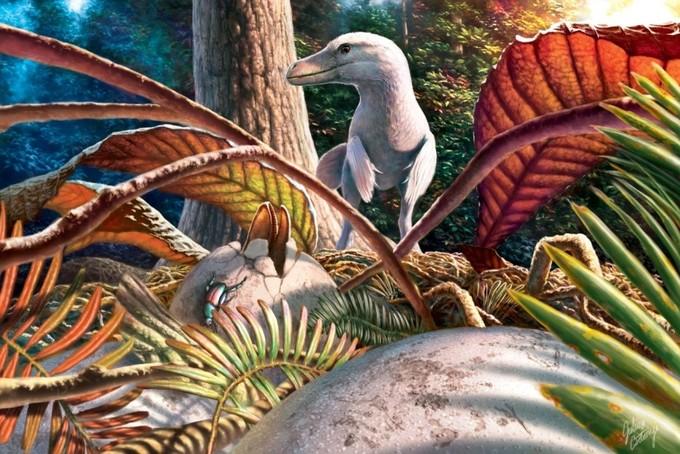 Bemutatták az első magyarországi dinoszaurusztojást