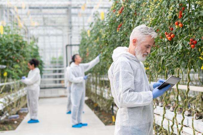 Milyen szerepe lehet a génszerkesztésnek az európai mezőgazdaságban?